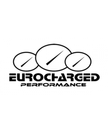 Eurocharged 63 AMG Performance Engine Software