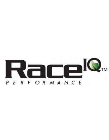 Race IQ ECU Tune M113